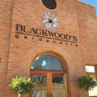 Blackwoods (Medium)